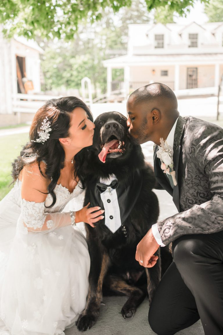 Bride and groom kissing dog in tux